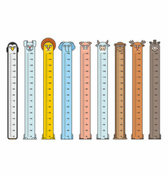 height charts vector image