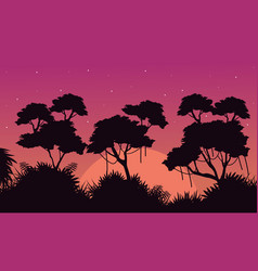 Landscape of jungle at sunrise silhouette style vector