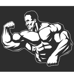 Man of iron vector image