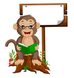Monkey reading a book vector