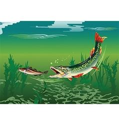 Cartoon fish vector