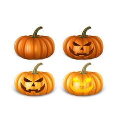 realistic pumpkin set - head jack lantern icon vector image