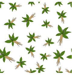 seamless pattern with mandragora vector image