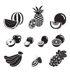 Fruits icons set monochrome vector
