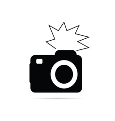camera flash black and white vector image vector image