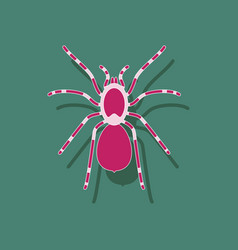 Paper sticker on background of tarantula vector