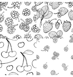 Seamless berry pattern set vector image