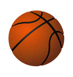 Basketball spherical inflated leather ball vector