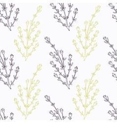 Hand drawn thyme branch stylized black and green vector