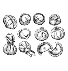 Set of dumplings vintage sketch vector