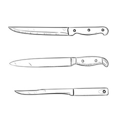 sketch of kitchen knives vector image vector image