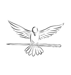 Soaring dove clutching staff front drawing vector
