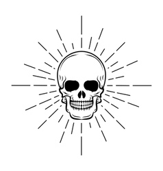 Vintage skull label emblem and logo vector