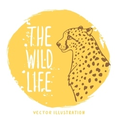 Cheetah orange vector