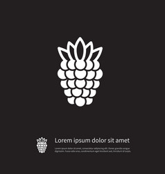 Isolated blackberry icon scrub element can vector