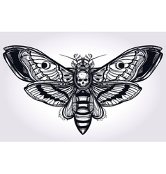 Deaths head hawk moth hand drawn silhouette vector