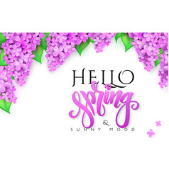 Hello spring banner with lettering lilac vector