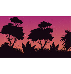 Landscape of tree on the jungle silhouette vector