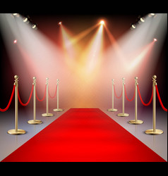 red carpet in illumination composition vector image vector image