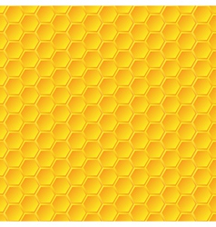 Honeycomb background vector image vector image