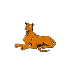 Mastiff dog mongrel barking sitting cartoon vector