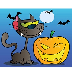 Black cat and winking halloween pumpkin vector