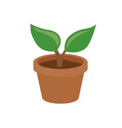 simple pot plant vector image vector image