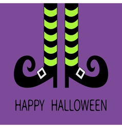 Witch legs with striped socks and shoes buckle vector