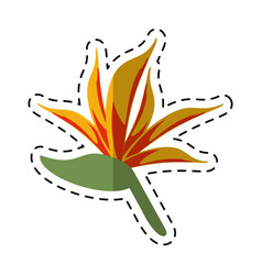 cartoon bird of paradise flower vector image vector image