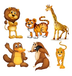 Different kinds of land animals vector image vector image
