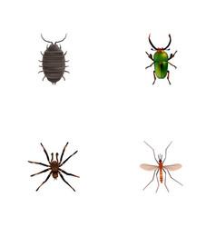 Realistic gnat arachnid dor and other vector