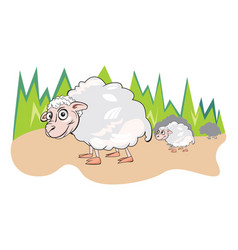 Sheep or ovis aries vector
