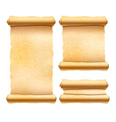old textured papyrus scrolls different shapes vector image
