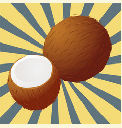 Coconut sectional vector