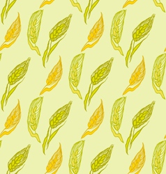 Scroll banner with ears of wheat hand drawn vector