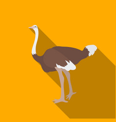 ostrich icon in flate style isolated on white vector image