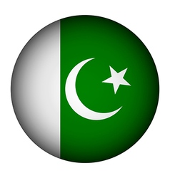 Pakistan flag button vector image