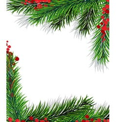 Holly berry and fir branches vector