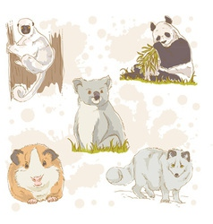 Animal wild set color vector