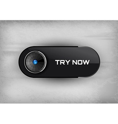 Try Button vector image