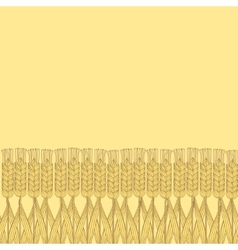wheat harvest background vector image vector image