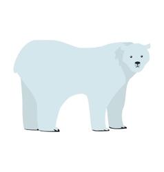 Polar Bear in Flat Design vector image