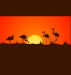 On orange background at sunset flamingo vector