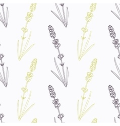 Hand drawn lavender branch stylized black and vector