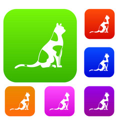sitting cat set color collection vector image