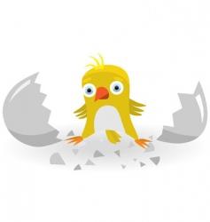 Birth of chicken vector