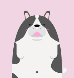 cute big fat French Bulldog vector image vector image