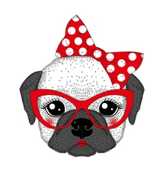 Cute french bulldog girl portrait with pin up bow vector image vector image