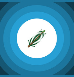 Isolated rosemary flat icon spruce leaves vector