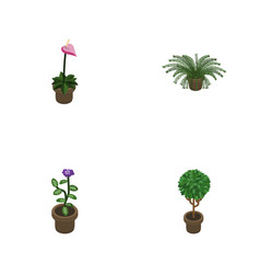 Isometric houseplant set of plant flower grower vector